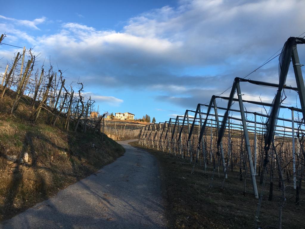 sentiero-dietro-antica-torre-hoel