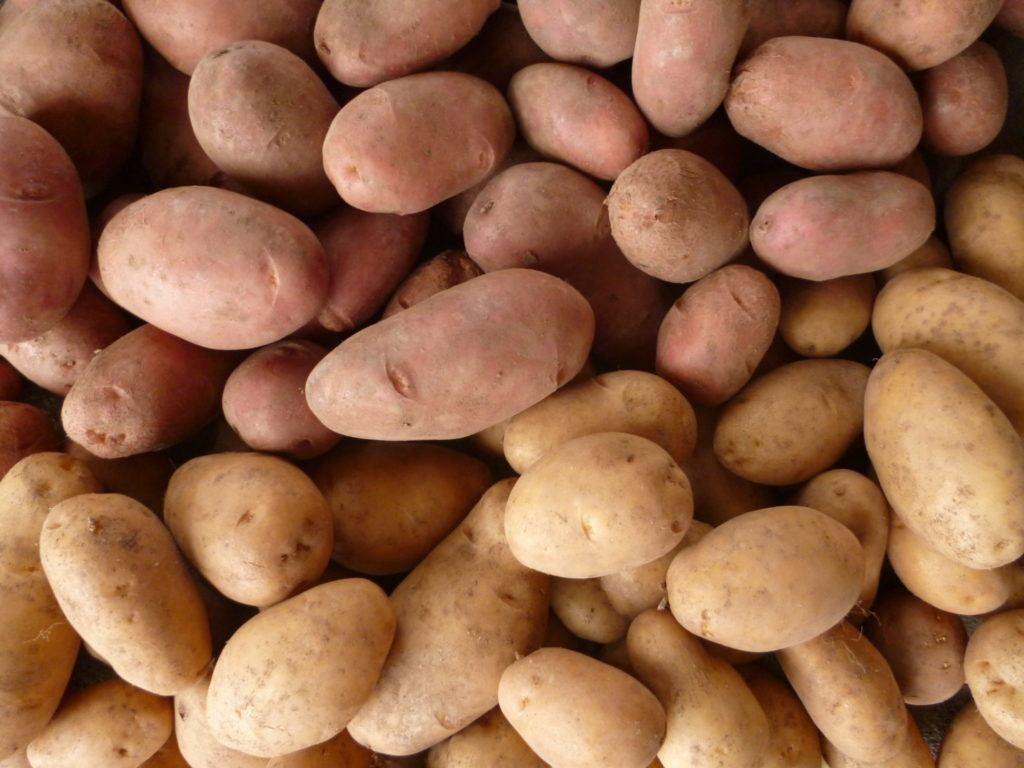 patate-prodotto-tipico-val-di-non